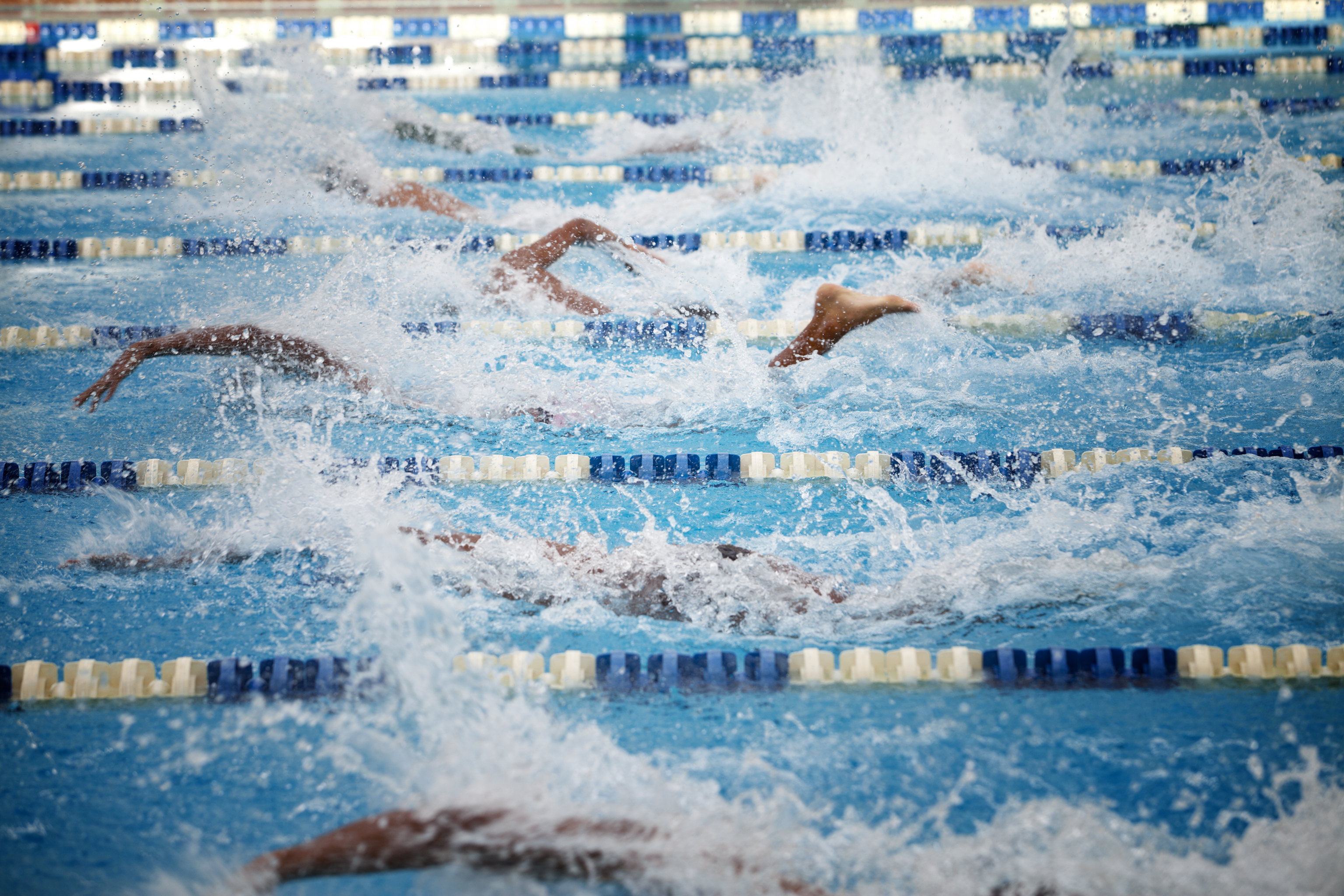 Swimmers compete in an Olympic-sized pool