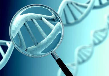 Magnifying glass showing zoomed in view of a dna double helix strand